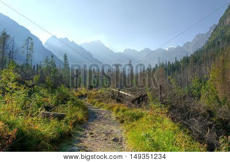 Summer mountain landscape. Touristic trail with mountain peaks in the background.