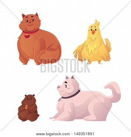 Fat, chubby cat, dog, chicken and hamster, cartoon vector illustration isolated on white background. Overweight domestic animals, chubby pets, obese cat, dog, hamster and chicken