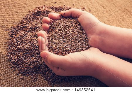 Flax seeds in hands against the background of sacking