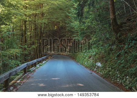 Empty winding road in Julian Alps forest Slovenia