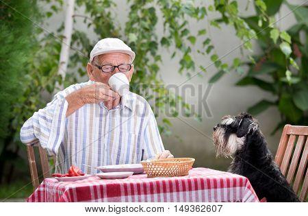 Senior Man Drinking Coffee In Garden