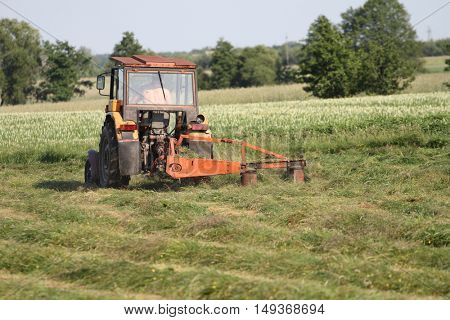 Pasture mowing with old red polish tractor and mower