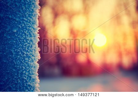 Frost in Winter at Sunset. Abstract Background. Shallow Depth of Field. Toned Photo with Bokeh and Copy Space.