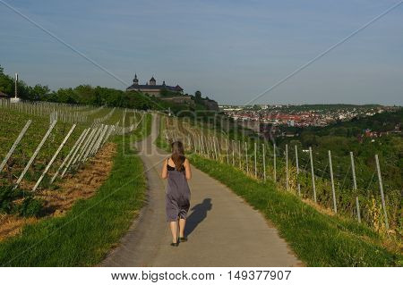 Woman walking on road with Vineyard landscape view to the castle Marienberg Wuerzburg Bavaria Germany