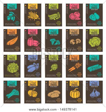Hand drawn vegetables posters set. Vector illustration.