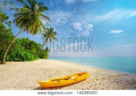 Kayak on sunny tropical beach with palm trees on Maldives