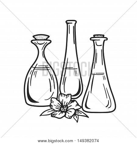 Bottles of aroma essential oil or spa and natural fragrance oil Vector image