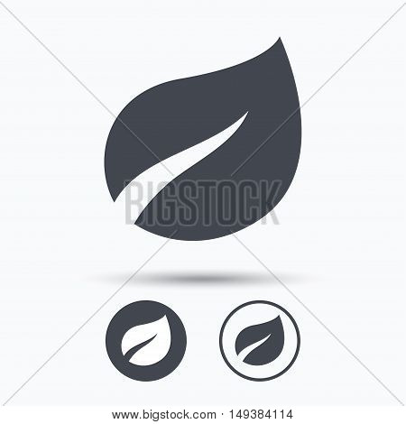 Leaf icon. Fresh organic product symbol. Circle buttons with flat web icon on white background. Vector