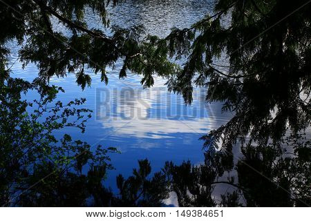 a picture of an exterior Pacific Northwest forest lake with a cirrus cloud reflection