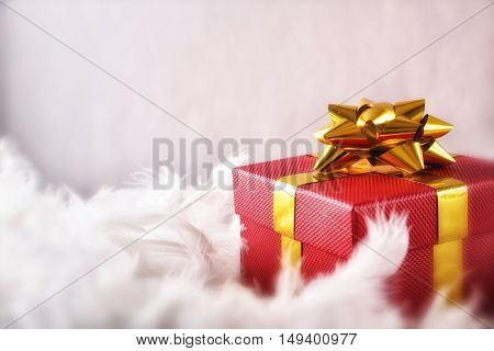 Red Gift Box With Golden Ribbon On White Feathers Front
