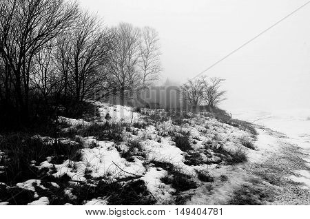 snow covered shoreline with bench and fog.