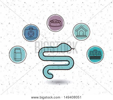Snake and icon set. Animal pet and nature theme. White and texture background. Vector illustration