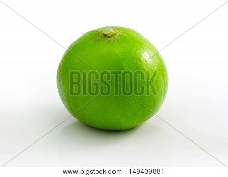 green lime lemon isolated on white studio isolated