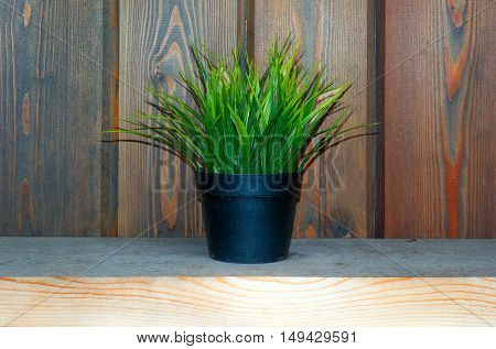 artifical grass in pot on desk. Fake grass decor
