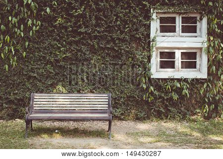 Vintage tone of Garden hedges and vintage window with a bench