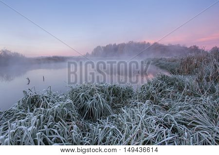 Frost On Grass In Cold Autumn Morning