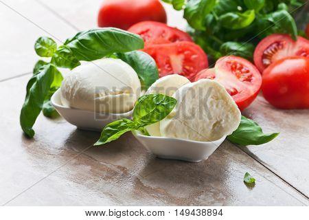 Mozzarella With Tomato And Basil