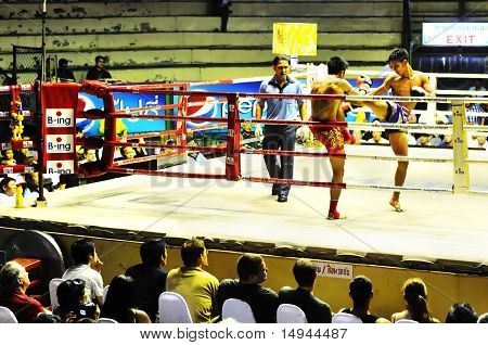 Thai Boxing.