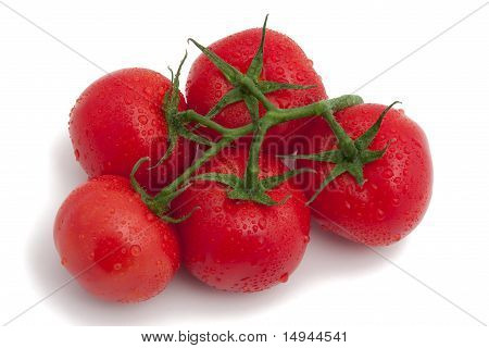cluster of tomatoes