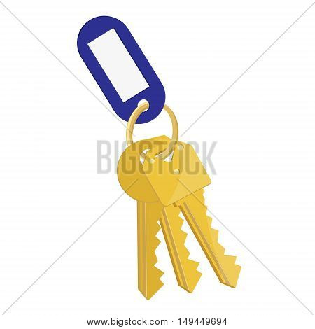Vector illustration blank blue tag and golden keys. Bunch of keys with keychain isolated on white background