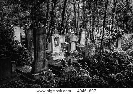 Black and white photo of an old jewish cemetery in Budapest Hungary.