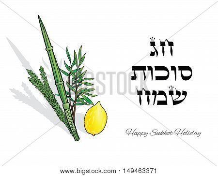 Happy Sukkot background. Hebrew translate: Happy Sukkot Holiday. Jewish traditional four species on white background  for Jewish Sukkot festival. Vector illustration.