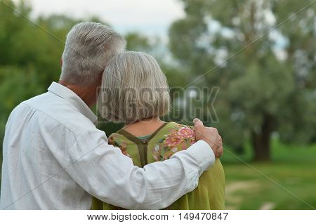 Senior couple resting at summer park, back view