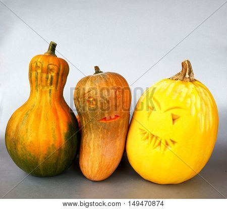 pumpkin harvest for decoration or for Halloween photo