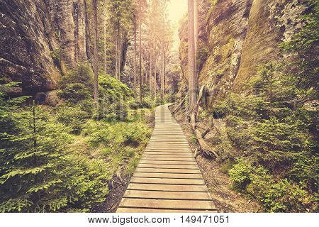 Vintage Toned Wooden Path In Adrspach Teplice Rocks.