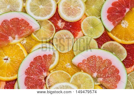 Colorful family of citrus fruits - slices of lemon, lime, grapefruit, orange, pomelo - for backgrounds