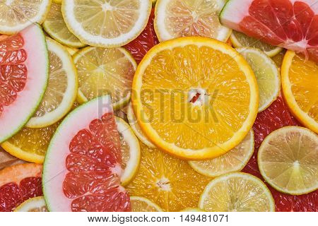 Colorful family of citrus fruits - slices of lemon, lime, grapefruit, orange, pomelo. Vitamins and healthy eating concept