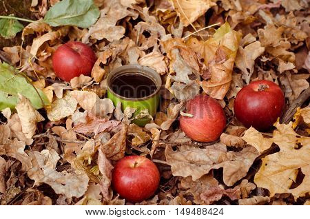 Coffee Mug In Autumn Fallen Leaves With Red Apples
