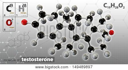 3d Illustration of testosterone neurotransmitter molecule on a gray background