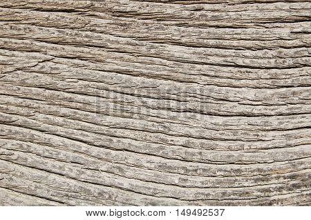 Wooden texture, wood background. vintage wood background.