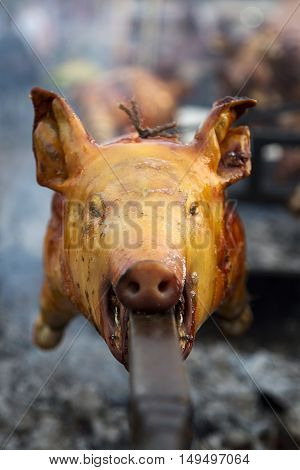 Roasted Pig On A Spit