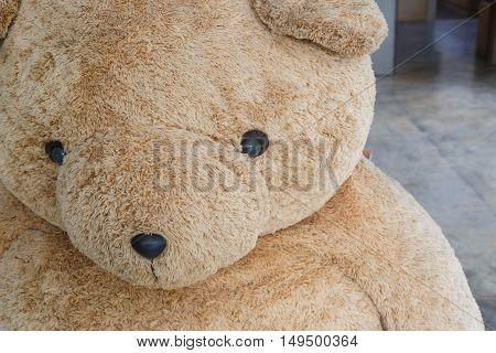 Close-up Big Doll Brown Bear Fluffy Fur