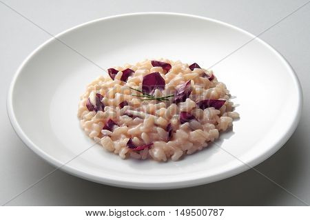 Dish of risotto with red radicchio isolated on grey plane