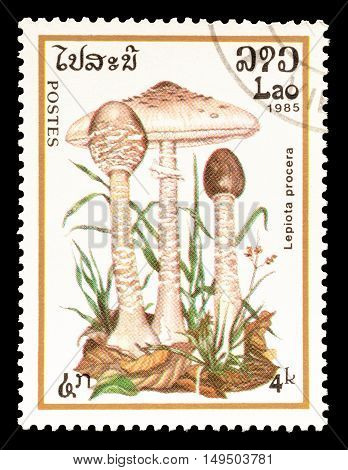 LAOS - CIRCA 1985 : Cancelled postage stamp printed by Laos, that shows Lepiota Procera mushroom.