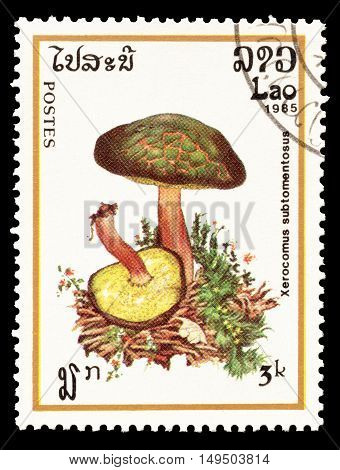 LAOS - CIRCA 1985 : Cancelled postage stamp printed by Laos, that shows Xerocomus Subtomentosus mushroom.