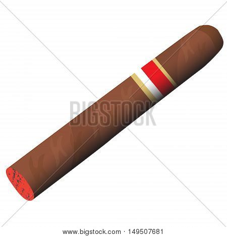 fragrant tobacco smoking cigar burning vector illustration