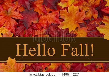 Hello Fall message Some fall leaves with text Hello Fall