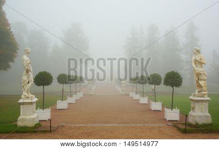 Foggy morning in the Catherine park in Tsarskoye Selo