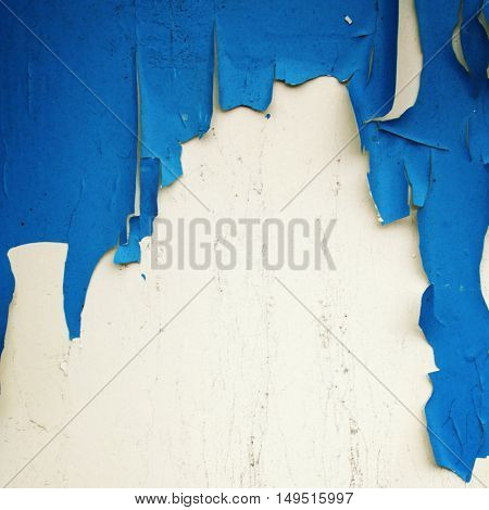 Dry peeling paint on the wall. Copy space for text. Close up photo. Bright blue paint on the white surface. Toned image. Abandoned place. Grunge background.