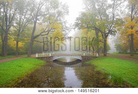 Foggy morning in Alexandrovsky Park in Tsarskoye Selo
