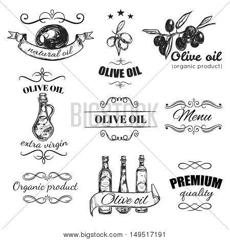Hand drawn olive oil emblem set with natural oil olive oil organic product descriptions vector illustration