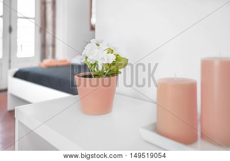 Closeup of a flower pot with natural blur in background