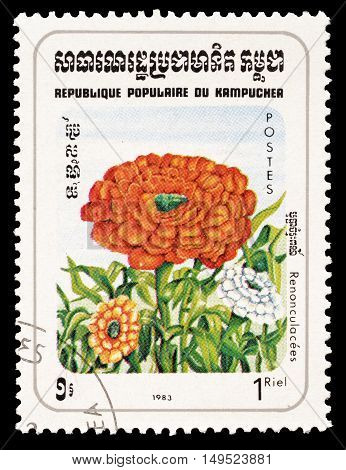 CAMBODIA - CIRCA 1983 : Cancelled postage stamp printed by Cambodia, that shows Buttercup flower.