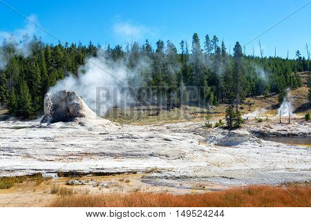 Giant Geyser View