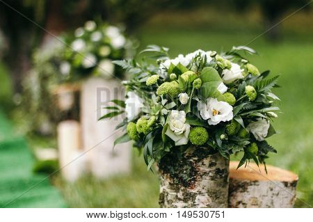 Wedding decoration of white roses on the marriage registration. Mounted on birch stumps, in a beautiful garden.