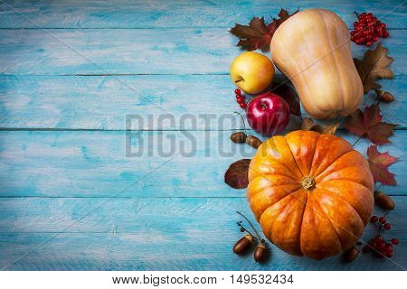 Thanksgiving greeting with pumpkins and fall leaves on blue background. Thanksgiving background with seasonal vegetables and fruits. Copy space